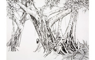 <p><em>Tangled Thoughts</em>, 2007, 40 x 54 inches, graphite on paper</p>