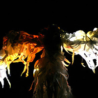 """<p>The White Hawk paper costume   Spirit Dance performed by Katharine Leigh Simpson   """"From the Ashes- She Arose""""  Collaboration with Mark Hughes   Photography: Julie Huffman © 2015  juliehuffman.com</p>"""