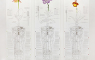 "<p><strong>Mechanical Orchid Triptych</strong>, 10 color screenprints on Coventry Rag paper, Edition of 25,&nbsp;&nbsp;44""x 50"", 2014</p>"